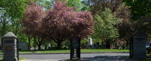 evergreen-cemetery-hours