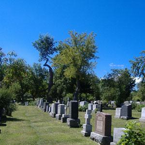 Elizabeth NJ Cemetery Services Near Me - Union County